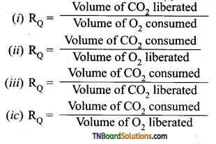 TN Board 11th Bio Botany Important Questions Chapter 14 Respiration 20