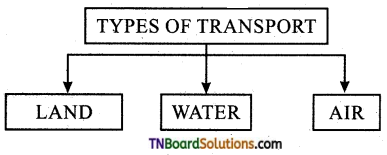 TN Board 11th Commerce Important Questions Chapter 14 Transportation 1