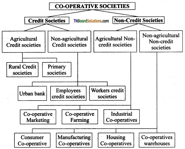 TN Board 11th Commerce Important Questions Chapter 7 Cooperative Organisation 1