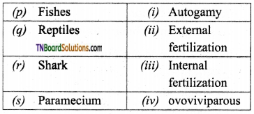 TN Board 12th Bio Zoology Important Questions Chapter 1 Reproduction in Organisms 11