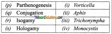 TN Board 12th Bio Zoology Important Questions Chapter 1 Reproduction in Organisms 12