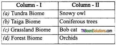 TN Board 12th Bio Zoology Important Questions Chapter 10 Organisms and Population 10