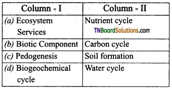 TN Board 12th Bio Zoology Important Questions Chapter 11 Biodiversity and its Conservation 11