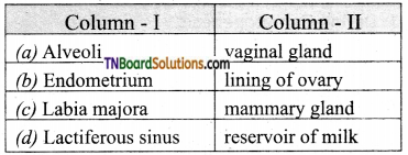 TN Board 12th Bio Zoology Important Questions Chapter 2 Human Reproduction 9