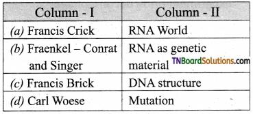 TN Board 12th Bio Zoology Important Questions Chapter 5 Molecular Genetics 10