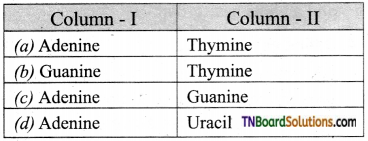 TN Board 12th Bio Zoology Important Questions Chapter 5 Molecular Genetics 11