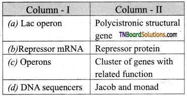 TN Board 12th Bio Zoology Important Questions Chapter 5 Molecular Genetics 13