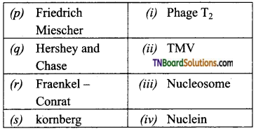 TN Board 12th Bio Zoology Important Questions Chapter 5 Molecular Genetics 5