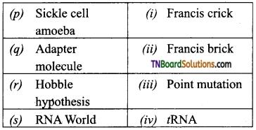 TN Board 12th Bio Zoology Important Questions Chapter 5 Molecular Genetics 7