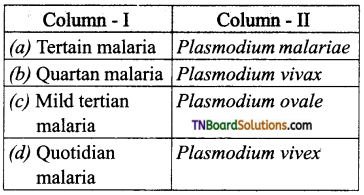 TN Board 12th Bio Zoology Important Questions Chapter 7 Human Health and Diseases 12