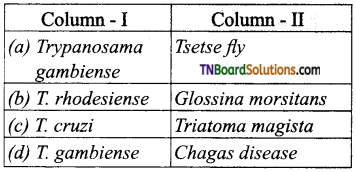 TN Board 12th Bio Zoology Important Questions Chapter 7 Human Health and Diseases 15