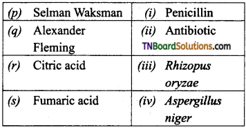 TN Board 12th Bio Zoology Important Questions Chapter 8 Microbes in Human Welfare 4