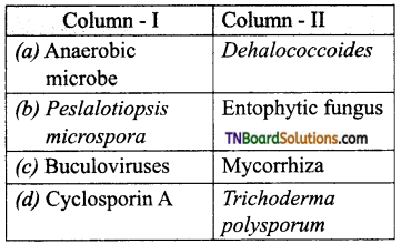 TN Board 12th Bio Zoology Important Questions Chapter 8 Microbes in Human Welfare 6