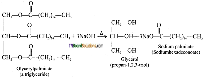 TN Board 12th Chemistry Important Questions Chapter 11 Hydroxy Compounds and Ethers 22