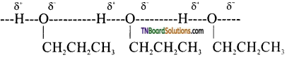 TN Board 12th Chemistry Important Questions Chapter 11 Hydroxy Compounds and Ethers 33