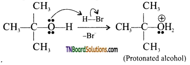 TN Board 12th Chemistry Important Questions Chapter 11 Hydroxy Compounds and Ethers 35