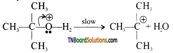 TN Board 12th Chemistry Important Questions Chapter 11 Hydroxy Compounds and Ethers 36