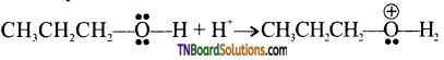 TN Board 12th Chemistry Important Questions Chapter 11 Hydroxy Compounds and Ethers 39