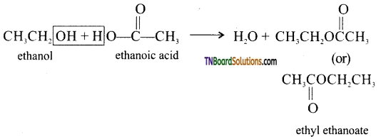 TN Board 12th Chemistry Important Questions Chapter 11 Hydroxy Compounds and Ethers 58