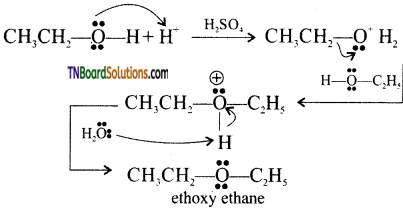 TN Board 12th Chemistry Important Questions Chapter 11 Hydroxy Compounds and Ethers 86
