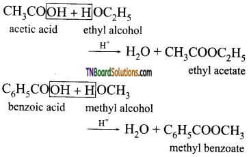 TN Board 12th Chemistry Important Questions Chapter 12 Carbonyl Compounds and Carboxylic Acids 125