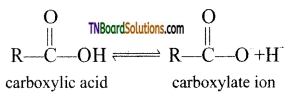 TN Board 12th Chemistry Important Questions Chapter 12 Carbonyl Compounds and Carboxylic Acids 143