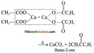 TN Board 12th Chemistry Important Questions Chapter 12 Carbonyl Compounds and Carboxylic Acids 15