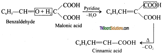 TN Board 12th Chemistry Important Questions Chapter 12 Carbonyl Compounds and Carboxylic Acids 156