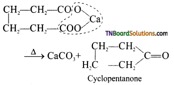 TN Board 12th Chemistry Important Questions Chapter 12 Carbonyl Compounds and Carboxylic Acids 16