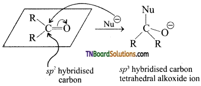 TN Board 12th Chemistry Important Questions Chapter 12 Carbonyl Compounds and Carboxylic Acids 31