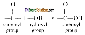 TN Board 12th Chemistry Important Questions Chapter 12 Carbonyl Compounds and Carboxylic Acids 96