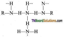 TN Board 12th Chemistry Important Questions Chapter 13 Organic Nitrogen Compounds 47