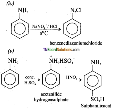 TN Board 12th Chemistry Important Questions Chapter 13 Organic Nitrogen Compounds 61