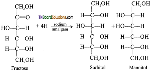 TN Board 12th Chemistry Important Questions Chapter 14 Biomolecules 15