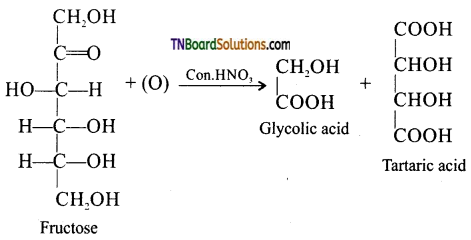 TN Board 12th Chemistry Important Questions Chapter 14 Biomolecules 16