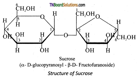 TN Board 12th Chemistry Important Questions Chapter 14 Biomolecules 20