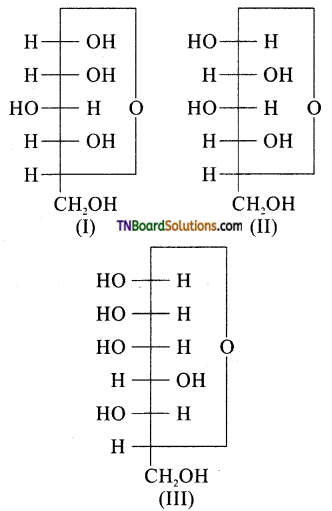 TN Board 12th Chemistry Important Questions Chapter 14 Biomolecules 32