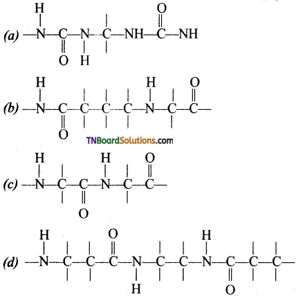 TN Board 12th Chemistry Important Questions Chapter 14 Biomolecules 33