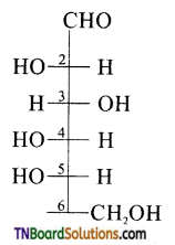 TN Board 12th Chemistry Important Questions Chapter 14 Biomolecules 4
