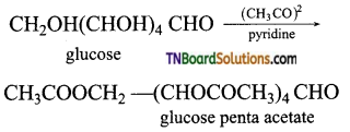 TN Board 12th Chemistry Important Questions Chapter 14 Biomolecules 5