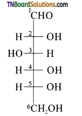 TN Board 12th Chemistry Important Questions Chapter 14 Biomolecules 7