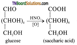 TN Board 12th Chemistry Important Questions Chapter 14 Biomolecules 8
