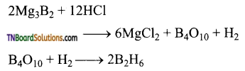 TN Board 12th Chemistry Important Questions Chapter 2 p-Block Elements – I 22