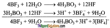 TN Board 12th Chemistry Important Questions Chapter 2 p-Block Elements – I 31