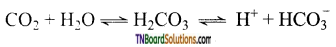 TN Board 12th Chemistry Important Questions Chapter 2 p-Block Elements – I 39
