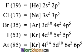 TN Board 12th Chemistry Important Questions Chapter 3 p-Block Elements – II 101