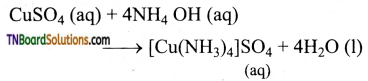 TN Board 12th Chemistry Important Questions Chapter 3 p-Block Elements – II 12