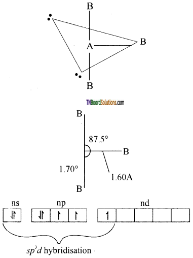 TN Board 12th Chemistry Important Questions Chapter 3 p-Block Elements – II 136