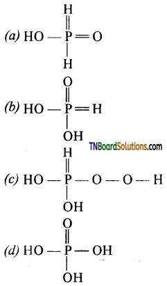 TN Board 12th Chemistry Important Questions Chapter 3 p-Block Elements – II 151