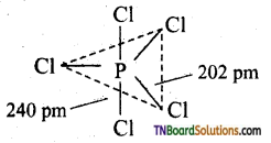 TN Board 12th Chemistry Important Questions Chapter 3 p-Block Elements – II 53